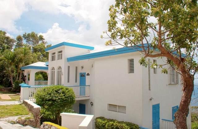 2AA-4 Crown & Hawk Ss, St. Thomas, VI 00802 (MLS #21-1607) :: Hanley Team   Farchette & Hanley Real Estate