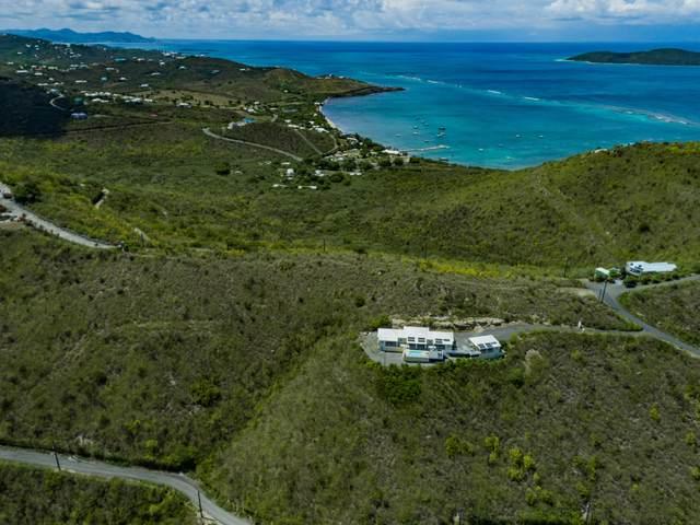 8 NG, 24 South Slob Eb, St. Croix, VI 00820 (MLS #21-1617) :: Hanley Team   Farchette & Hanley Real Estate