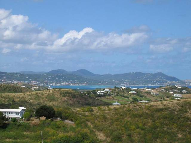 67 Seven Hills Ea, St. Croix, VI 00820 (MLS #21-169) :: Coldwell Banker Stout Realty