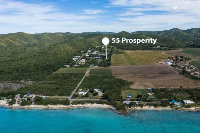 55 Prosperity, St. Croix, VI 00840 (MLS #21-182) :: Hanley Team | Farchette & Hanley Real Estate
