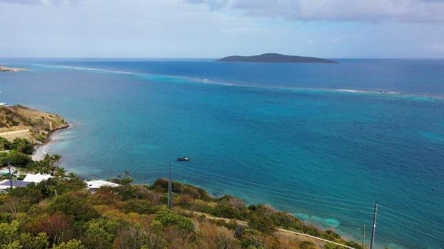 2AA North Grapetree Eb, St. Croix, VI 00820 (MLS #21-184) :: Coldwell Banker Stout Realty