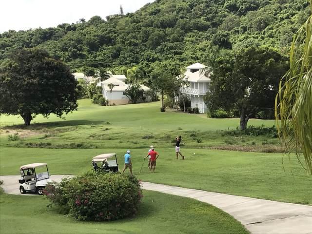 502 River Pr, St. Croix, VI 00850 (MLS #21-196) :: The Boulger Team @ Calabash Real Estate