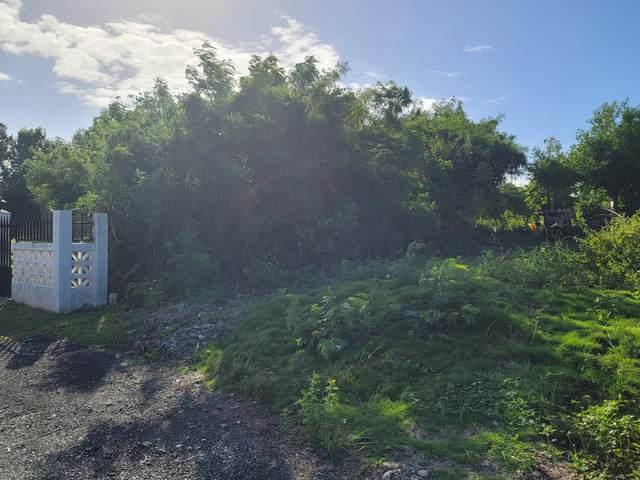 199C/200A Hannah's Rest We, St. Croix, VI 00840 (MLS #21-204) :: The Boulger Team @ Calabash Real Estate
