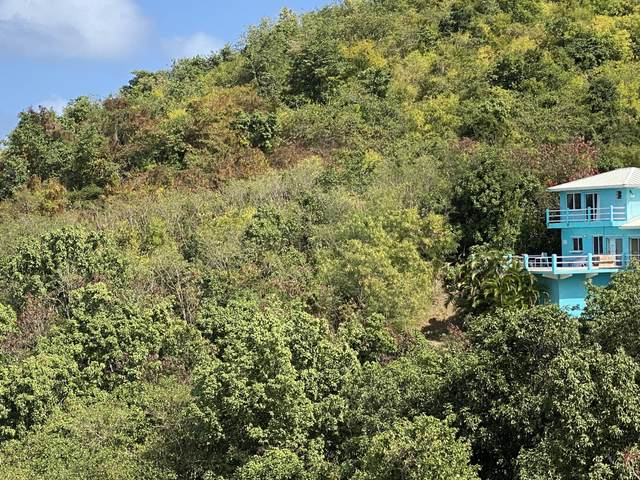 46 Seven Hills Ea, St. Croix, VI 00820 (MLS #21-226) :: Coldwell Banker Stout Realty