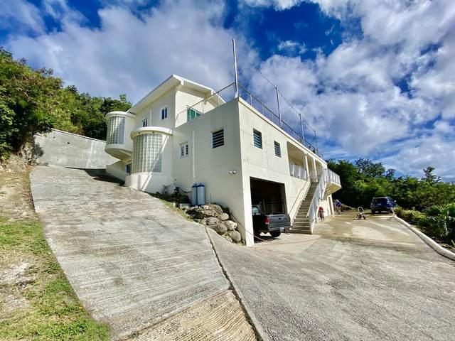 58A Solberg Lns, St. Thomas, VI 00802 (MLS #21-246) :: The Boulger Team @ Calabash Real Estate