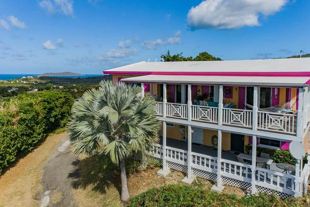 67 68A Mt. Pleasant Ea, St. Croix, VI 00820 (MLS #21-252) :: Hanley Team | Farchette & Hanley Real Estate