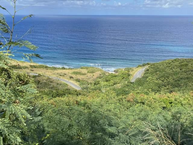 109 Concordia Nb, St. Croix, VI 00820 (MLS #21-253) :: Hanley Team | Farchette & Hanley Real Estate