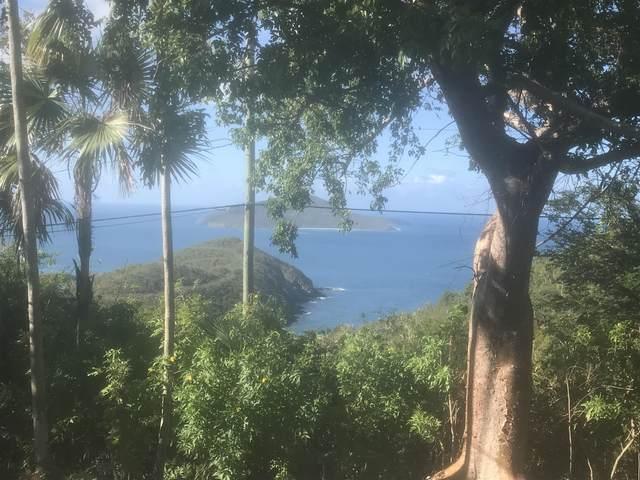 123B-1 Anna's Retreat New, St. Thomas, VI 00802 (MLS #21-258) :: The Boulger Team @ Calabash Real Estate