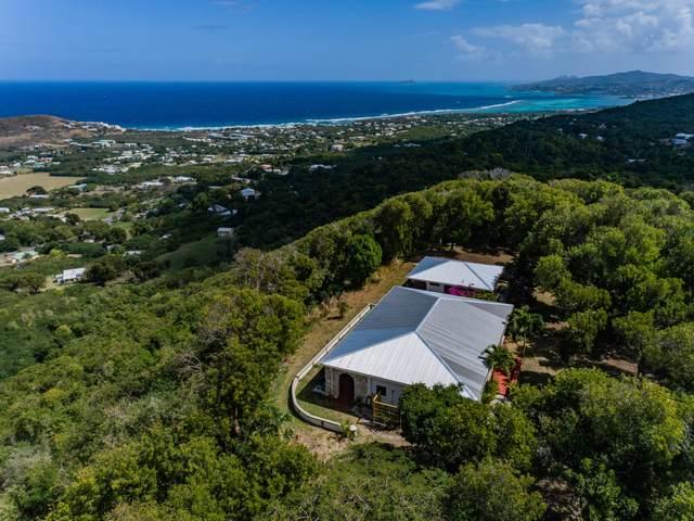 32 St. John Qu, St. Croix, VI 00820 (MLS #21-261) :: The Boulger Team @ Calabash Real Estate