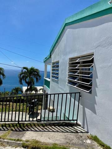 4A Bonne Esperance We, St. Thomas, VI 00802 (MLS #21-263) :: The Boulger Team @ Calabash Real Estate