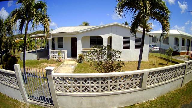 81 Humbug Qu, St. Croix, VI 00840 (MLS #21-266) :: Hanley Team | Farchette & Hanley Real Estate
