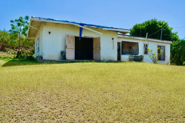 187 Two Brothers We, St. Croix, VI 00840 (MLS #21-274) :: The Boulger Team @ Calabash Real Estate