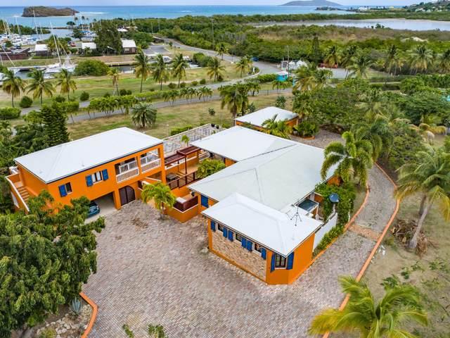 41 Southgate Farm Ea, St. Croix, VI 00820 (MLS #21-289) :: Coldwell Banker Stout Realty