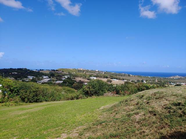 28 St. John Qu, St. Croix, VI 00820 (MLS #21-299) :: Hanley Team | Farchette & Hanley Real Estate
