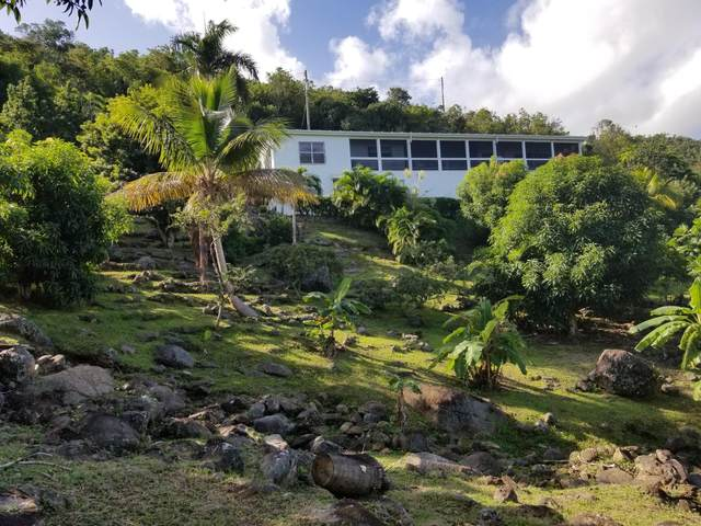 3G 3F 3A Canaan & Sherpenjewel Gns, St. Thomas, VI 00802 (MLS #21-300) :: Hanley Team | Farchette & Hanley Real Estate
