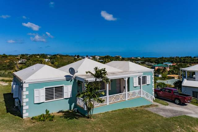 141 La Reine Ki, St. Croix, VI 00850 (MLS #21-302) :: Hanley Team | Farchette & Hanley Real Estate