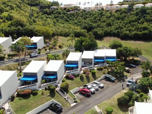 123 Teagues Bay Eb, St. Croix, VI 00820 (MLS #21-31) :: The Boulger Team @ Calabash Real Estate