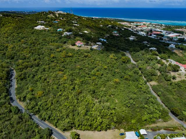 61,62, 63 Beeston Hill Co, St. Croix, VI 00820 (MLS #21-310) :: Coldwell Banker Stout Realty