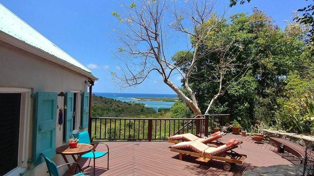 44 St. John Qu, St. Croix, VI 00820 (MLS #21-316) :: The Boulger Team @ Calabash Real Estate