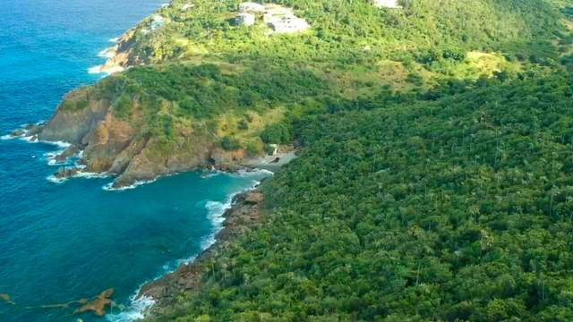 4 Rem Lovenlund Gns, St. Thomas, VI 00802 (MLS #21-333) :: Coldwell Banker Stout Realty