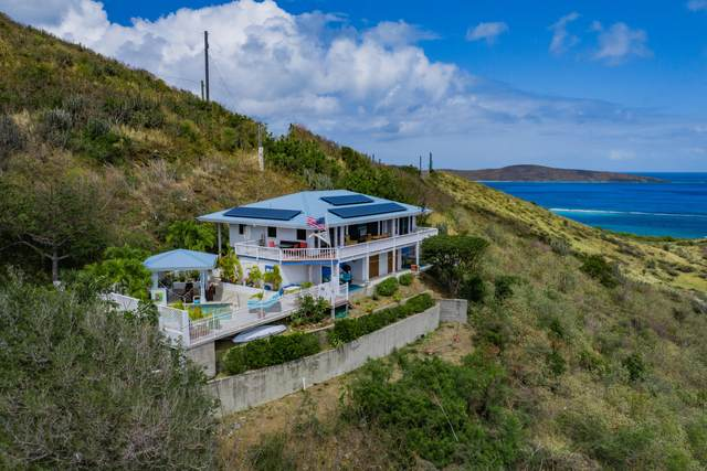 215 Cotton Valley Eb, St. Croix, VI 00820 (MLS #21-352) :: Hanley Team | Farchette & Hanley Real Estate