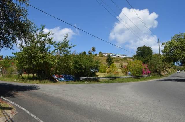 Port. 8Z Constitution Hill Co, St. Croix, VI 00820 (MLS #21-359) :: Hanley Team | Farchette & Hanley Real Estate