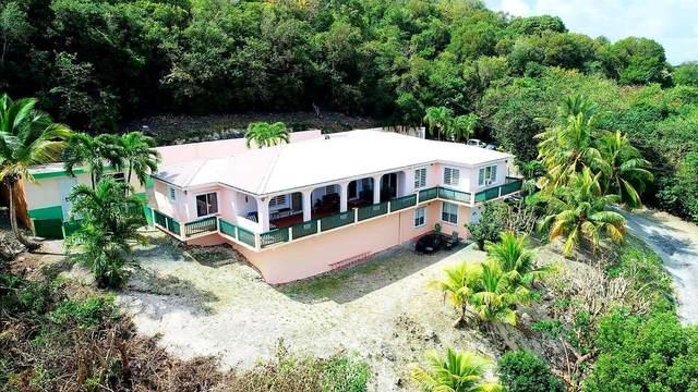 31-AA St. John Qu, St. Croix, VI 00820 (MLS #21-376) :: The Boulger Team @ Calabash Real Estate