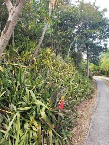 14 Little Fountain Ki, St. Croix, VI 00850 (MLS #21-388) :: Coldwell Banker Stout Realty