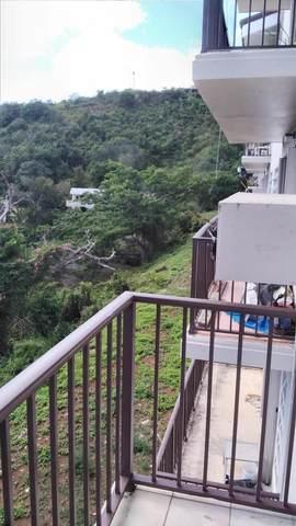 303 Hospital Ground Ki, St. Thomas, VI 00802 (MLS #21-396) :: The Boulger Team @ Calabash Real Estate