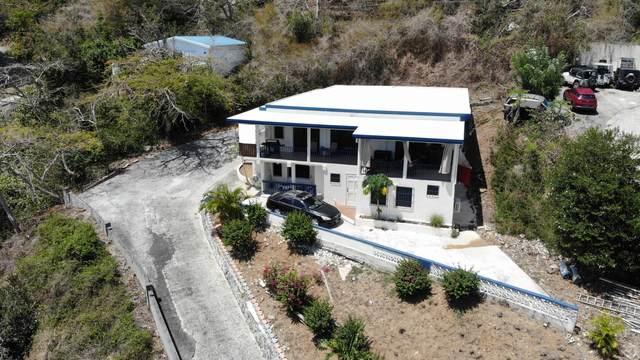 14-6 Frenchman Bay Fb, St. Thomas, VI 00802 (MLS #21-41) :: The Boulger Team @ Calabash Real Estate