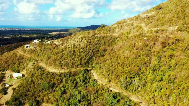 533 Mon Bijou Ki, St. Croix, VI 00850 (MLS #21-415) :: Hanley Team | Farchette & Hanley Real Estate