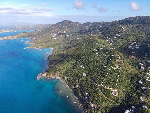 2E-51-21 Caret Bay Lns, St. Thomas, VI 00802 (MLS #21-422) :: Coldwell Banker Stout Realty
