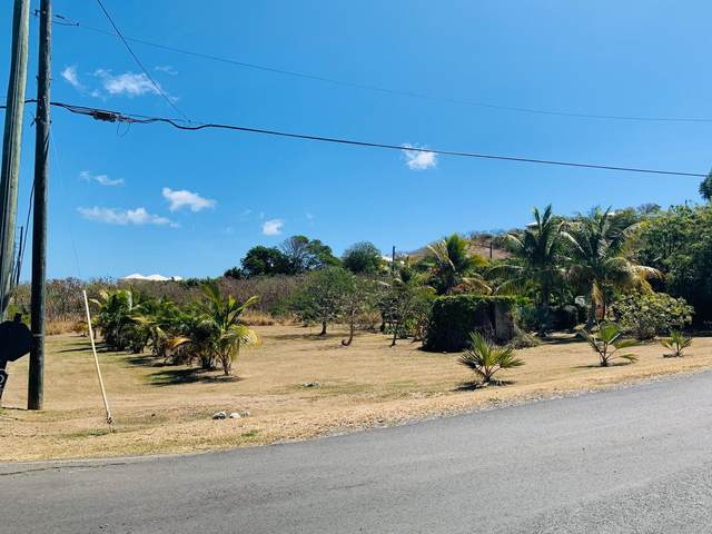 79 Green Cay Ea, St. Croix, VI 00820 (MLS #21-423) :: Coldwell Banker Stout Realty