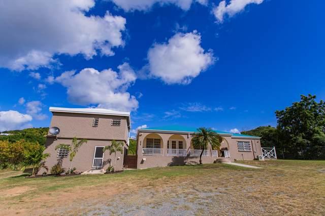 22 Tipperary Ea, St. Croix, VI 00820 (MLS #21-43) :: Hanley Team   Farchette & Hanley Real Estate