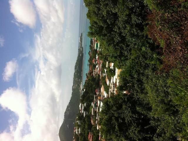 14 Agnes Fancy Gns, St. Thomas, VI 00802 (MLS #21-436) :: Hanley Team   Farchette & Hanley Real Estate