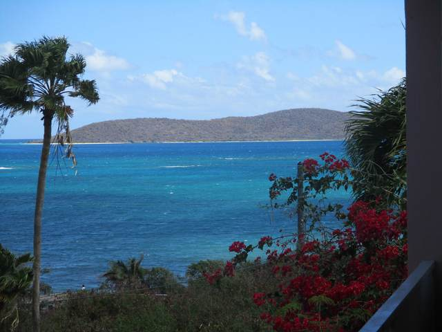 H1 Coakley Bay Ea, St. Croix, VI 00820 (MLS #21-450) :: Coldwell Banker Stout Realty