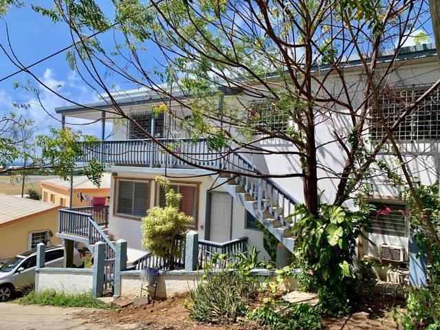 11F-A Lindberg Bay Ss, St. Thomas, VI 00802 (MLS #21-457) :: Coldwell Banker Stout Realty