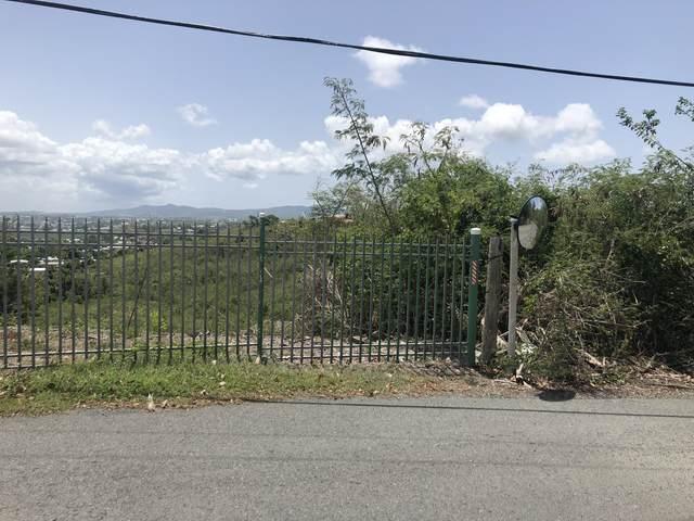 12 Q Constitution Hill Qu, St. Croix, VI 00820 (MLS #21-458) :: The Boulger Team @ Calabash Real Estate