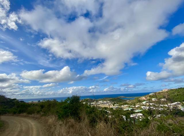 98 Mt. Welcome Ea, St. Croix, VI 00820 (MLS #21-462) :: Coldwell Banker Stout Realty