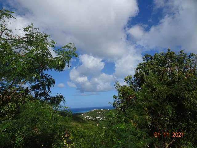 25 Mt. Welcome Ea, St. Croix, VI 00820 (MLS #21-47) :: Hanley Team | Farchette & Hanley Real Estate