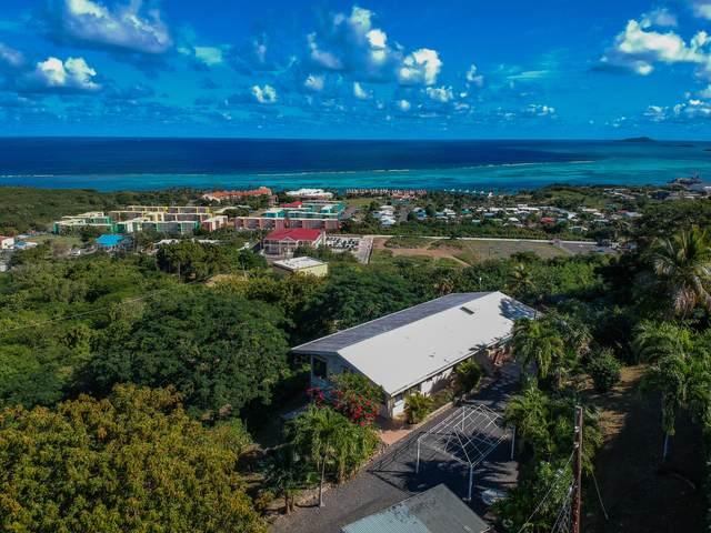 2C Little Princesse Co, St. Croix, VI 00820 (MLS #21-48) :: The Boulger Team @ Calabash Real Estate