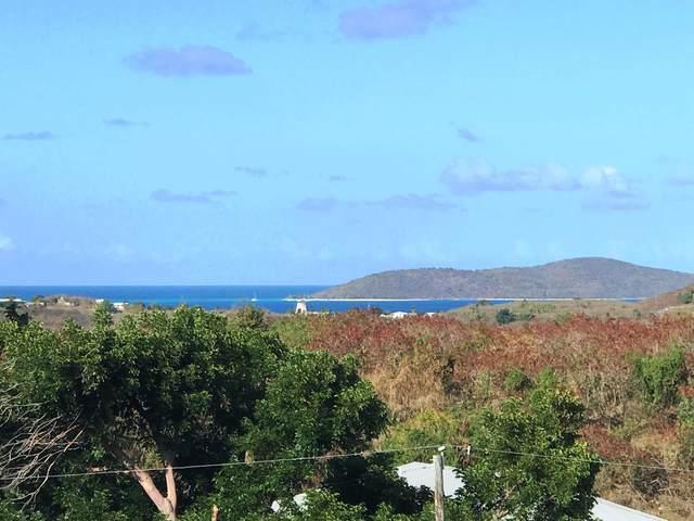 85 Southgate Farm Ea, St. Croix, VI 00820 (MLS #21-480) :: Hanley Team | Farchette & Hanley Real Estate