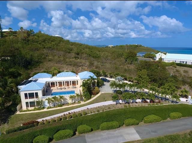 121 Anna's Hope Ea, St. Croix, VI 00820 (MLS #21-484) :: Hanley Team   Farchette & Hanley Real Estate