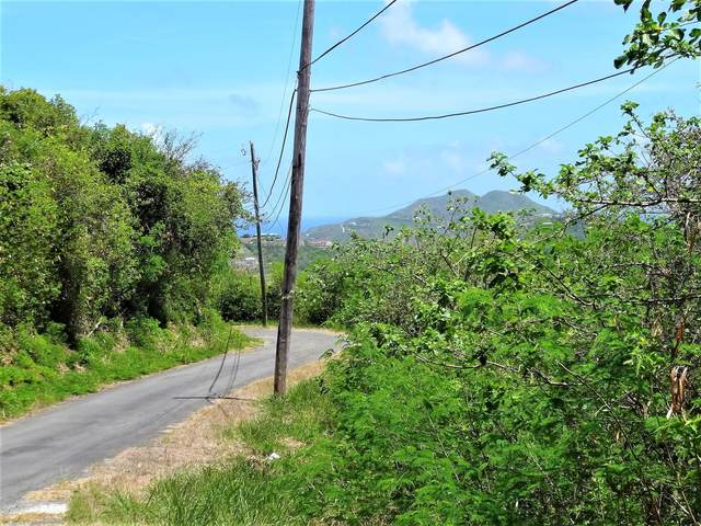 142 Cotton Valley Eb, St. Croix, VI 00820 (MLS #21-508) :: Coldwell Banker Stout Realty