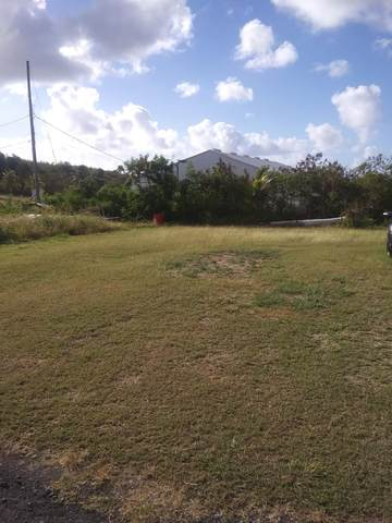 757 Barren Spot Qu, St. Croix, VI 00820 (MLS #21-509) :: The Boulger Team @ Calabash Real Estate