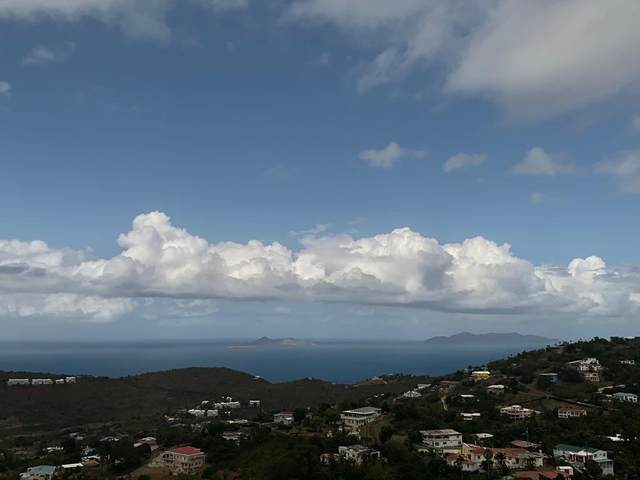 4 St. Joseph & Rosendahl Gns, St. Thomas, VI 00802 (MLS #21-512) :: Hanley Team | Farchette & Hanley Real Estate