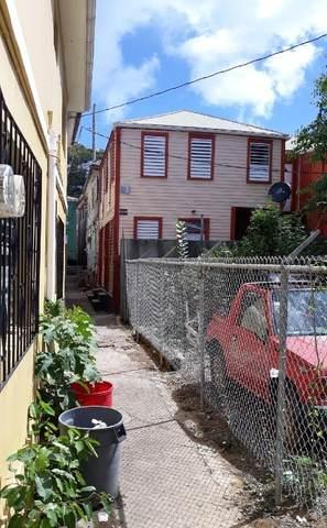 24B Regjerings Gade, St. Thomas, VI 00802 (MLS #21-525) :: Coldwell Banker Stout Realty