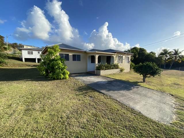 741 Strawberry Hill Ki, St. Croix, VI 00850 (MLS #21-535) :: Hanley Team | Farchette & Hanley Real Estate