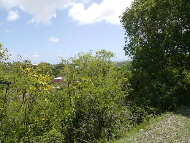 93-D La Grande Prince Co, St. Croix, VI 00820 (MLS #21-554) :: Coldwell Banker Stout Realty