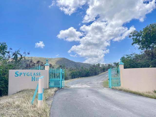 58 Eliza's Retreat Ea, St. Croix, VI 00820 (MLS #21-558) :: Hanley Team | Farchette & Hanley Real Estate